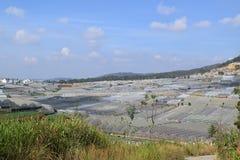 Serre nella valle dell'abetaia in Dalat, Vietnam Immagine Stock Libera da Diritti