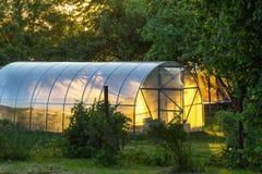Serre op het gebied Privé tuin Geel zonnig licht royalty-vrije stock foto's