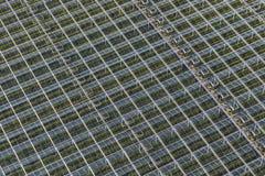 Serre riempite pianta aerea Fotografia Stock Libera da Diritti
