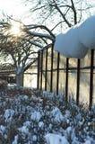 Serre tijdens de de wintertijd Stock Afbeelding