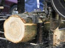 Serrería de la sierra de cinta que corta un registro del pino Imagen de archivo