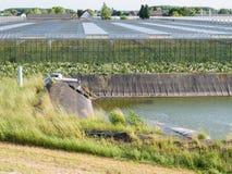 Serres chaudes de crèche de fleur dans le polder de Bommelerwaard, bas image libre de droits
