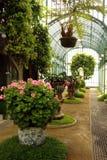 Serres chaudes royales de Laeken Image libre de droits