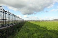 Serres chaudes sous le ciel bleu et les nuages blancs Photo libre de droits