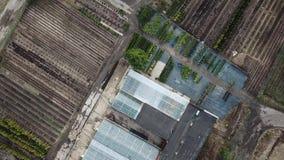 Serres en bedden VR Williams, Lugovaya-district van Lobnya Het Gebied van Moskou, Rusland Lucht Mening stock videobeelden