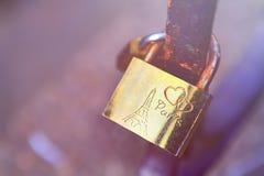 Serrure d'amour de Paris Images stock