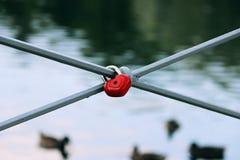 Serrure de forme de coeur d'amour sur le pont en bois Dehors l'eau de plan rapproché et fond de canards Photo stock