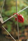 Serrure rouge dans la forme de coeur sur le pont de corde Photographie stock