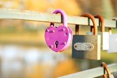 Serrures d'amour, amour Fond de nature Le jour de Valentine Images libres de droits