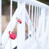 Serrures d'amour de mariage sur le pont Photographie stock