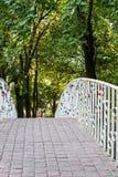 Serrures de l'amour fixes aux balustrades du pont en parc Photo libre de droits