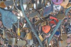 Serrures sur l'arbre Châteaux pour le bonheur Serrures de mariage sur un arbre Photographie stock libre de droits