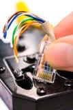 Sertissez par replis le connecteur de l'outil rj45 sur le fond blanc Photos stock