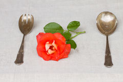 Served antique cutlery  - spoon and fork Royalty Free Stock Photos