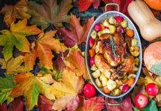 Served briet Danksagung die Türkei auf hellem Herbstlaubhintergrund stockbilder
