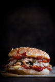 Served chicken burger Royalty Free Stock Image