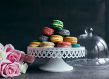 Served colorful macaroons Stock Images