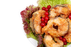 The served dish from fish, salad and a cranberry Stock Photography