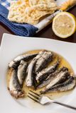 Served marinated sardines in the oil with lemon and corn bread Stock Photography