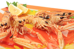 Served seafood Stock Images