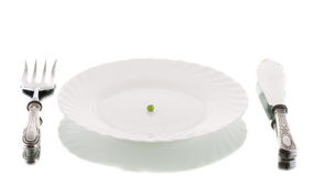 Served sir. Diet concept with one peas on the plate Stock Images