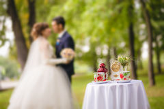 Served table and kissing groom and bride Stock Image