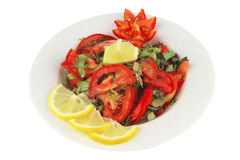 Served vegetable tomato salad Royalty Free Stock Images
