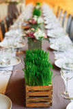 Served wedding table with grass decorations Royalty Free Stock Photography