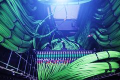 Server, audio cable, acoustic cables closeup Stock Image