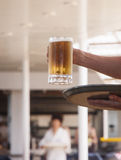 Server Carrying Mug of Beer. A server carrying a tray and a frosty mug of beer Royalty Free Stock Photo
