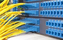 Server della rete Internet e di comunicazione Fotografia Stock