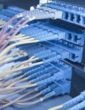 Server della rete Internet e di comunicazione Fotografie Stock Libere da Diritti