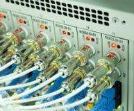 Server della rete internet e di comunicazione Fotografia Stock Libera da Diritti