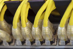 Server Internet Connected with LAN cables Royalty Free Stock Images