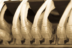 Server Internet Connected with LAN cables Stock Photography