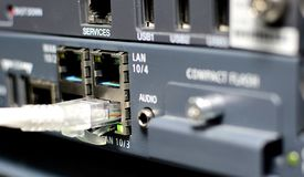 Server with networking cable Stock Photography