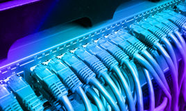 Server rack with blue internet patch cord cables royalty free stock photo