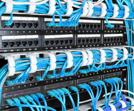 Server rack with blue internet patch cord cables Royalty Free Stock Photos