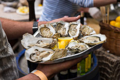 Server with Tray of Fresh Oysters with Lemon Royalty Free Stock Images
