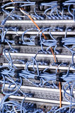 Server und Drähte Stockfotografie