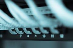 Serverinternet förband med fokusen för LAN-kabelkanal 9 arkivbilder