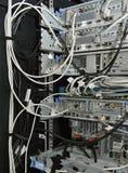 Serveror i kuggen i en server hyr rum royaltyfri bild
