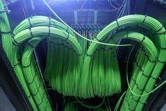 Serveur audio acoustique de câble vert sonore de câble Beaucoup de câbles acoustiques Câble oaxial de ¡ de Ð pour le serveur de t images stock