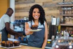 Serveur servant un gâteau de tasse au compteur image stock