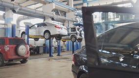 Serviço automotivo de trabalho - verificação do carro Imagem de Stock