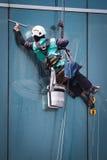 serviço das janelas da limpeza do trabalhador na construção alta da elevação Fotos de Stock Royalty Free
