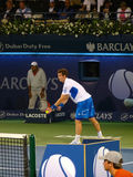 Serviço de Andy Murray Fotografia de Stock Royalty Free