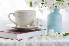 Serviço de chá no jardim Copos do chá e do potenciômetro do chá Chá bebendo Fotografia de Stock