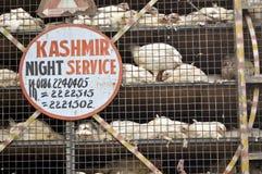 Serviço de Kashmir imagens de stock