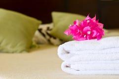 Serviço de quarto do hotel Imagem de Stock